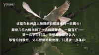 20160407学习打鸟-长洲岛的白鹭