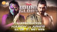 【橙子解说】TNA荣耀之路 奥斯丁阿里斯 VS. 杰夫