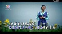 视频: 西海情歌-art--降央卓玛--art-a31c4298e613a6f064c47d1977fc2eb4