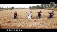 回家收麦  MV    转疯了   看看农民伯伯汗水与喜悦