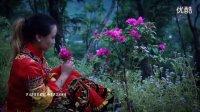 彝族歌曲相爱的人为何不能在一起   鲁家辉