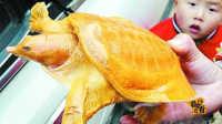 湖北农妇发现传说级黄金甲鱼