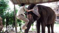 花絮:尼泊尔骑大象的方法