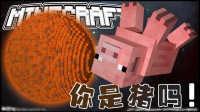 【英海】【太空计划!(下)】拯救一只猪?-1.10剧情跑酷地图