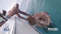 """佛罗里达海钓巨型黄石斑鱼,再现""""老人与海""""的场景"""
