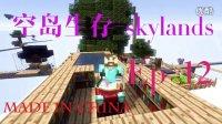 我能骑♂马啦【新风】Minecraft《空岛生存》★我的世界★1.10EP-12