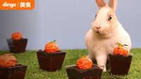 dingo 吃什么 2016 制作超萌胡萝卜花盆蛋糕 22