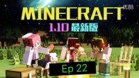 大战末影龙【甜萝】1.10新特性收集原版MC多人生存Ep22我的世界★Minecraft