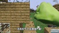 我的世界真人版绿巨人浩克