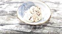 ROKI烘焙-蔓越莓饼干
