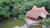 上海郊区老头老太喝茶嗑瓜子的茅草亭 竟是中国几十年来最伟大的建筑 223