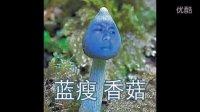 蓝瘦香菇火爆社交网络 蓝瘦香菇究竟是什么意思