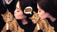 【萌星人de那些破事63】word天!小猫竟然拒绝美女香吻!