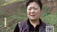 百家碎戏《看上介绍人》(2016-10-19)