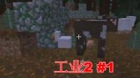 【room】《minecraft》工业2#1 新的生活