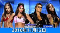 【中文解说】WWE2016年11月12日贝拉姐妹vs塔米纳
