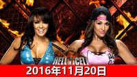 【中文解说】WWE2016年11月20日女子地狱牢笼赛!蕾