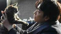娱乐圈小女警 2016 《假如猫从世界上消失了》非常感激你来到这个世界 26