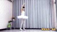 《花雨夜》美女青青天鹅舞衣圣洁纯美青青世界广场舞