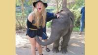 性感美女与大象一起热舞结果被大象恶搞了 搞笑视频傻缺集锦