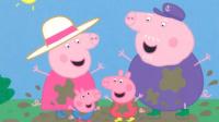 小猪佩奇怀孕了_粉红小猪去约会