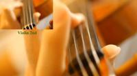 【小提琴】四月是你的谎言 Kirameki丨ViolinxViola