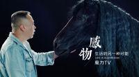 【感物】揭开电影实体特效神秘面纱