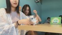 握爪来了(第22期):小姐姐们的龙猫咖啡馆