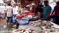 带你看看巴基斯坦的海鲜批发市场, 完全不一样的感觉