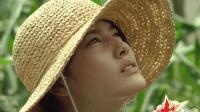 日本纯美治愈系电影《小森林》