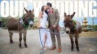 我们终于结婚啦!!!- Lex Griffin & Lainey Bopster - WE MADE IT!