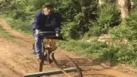 傻子学骑自行车 笑了一整天 搞笑视频 傻缺集锦 爆笑段子