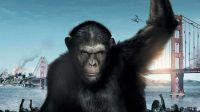 《猩球崛起3》人类濒临灭绝,猿猴救了一个人类小女孩,让人深思!