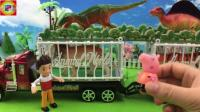 莱德队长和小猪佩奇乔治参观动物园运输车玩具 汪汪队立大功 44