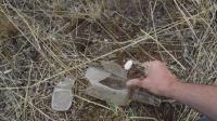 【野外求生】如何利用废弃的玻璃瓶来制作箭头