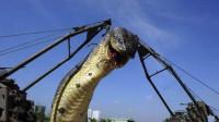 三峡灵异事件:建大坝切断龙脉 惊动封印的蛇是真的吗 22