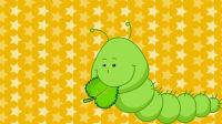 嘟拉智慧乐园 为什么冬眠后的昆虫醒来做的第一件事是喝水?