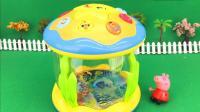 小猪佩奇玩多功能梦幻海洋鼓电动玩具 179
