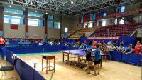 2017潍坊市中小学生体育联赛乒乓球小学男子团体决赛【二】