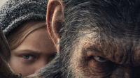 2017年好莱坞暑期口碑王《猩球崛起3》北美亮相!首周末全球大爆1亿美元!
