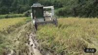 水稻收割机烂田作业视频