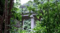 云南这条公路被誉为景色最好的公路之一, 全程架桥从热带雨林上空穿过