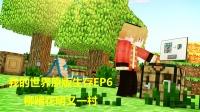 【猫腻】我的世界1.12原版生存EP6-柳暗花明又一村-MinecraftMc