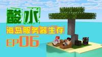 我的世界《酸水海岛服务器多人生存EP6 购买胡萝卜》Minecraft 安逸菌解说