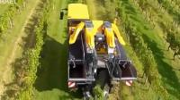 葡萄收割机, 现代科技, 一个人一天可以收10亩地