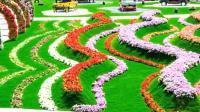 旅游攻略: 世界最富有的国家迪拜 同时拥有最美丽的花园奇迹花园