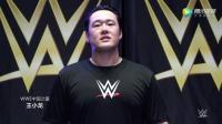 WWE美式摔跤娱乐 2017摔跤狂热大赛 中文直播中国