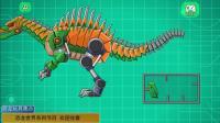 恐龙帝国 玩具战争包_10种恐龙玩具战争机器人 恐龙玩具  恐龙总动员 恐龙游戏