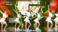 韩国气质美女深情献唱,激情热舞惹人心动 不许拿出来就这样出去