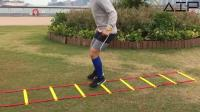 运动员提升协调性及敏捷度必备的训练器材, 利用它可以有32种健身玩法